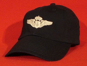 USAF Chief Flight Nurse wings AeroMed hat